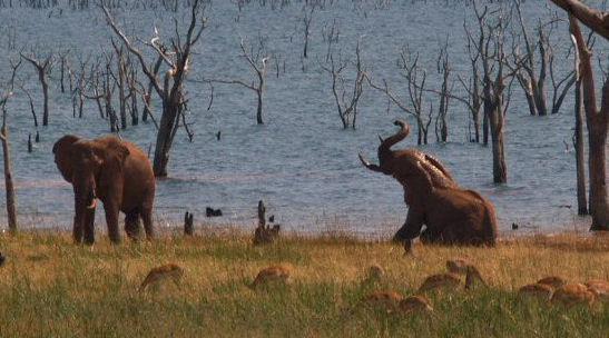 Le lac Kariba, Zimbabwe